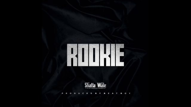 Rookie song by Shatta Wale Audio Download