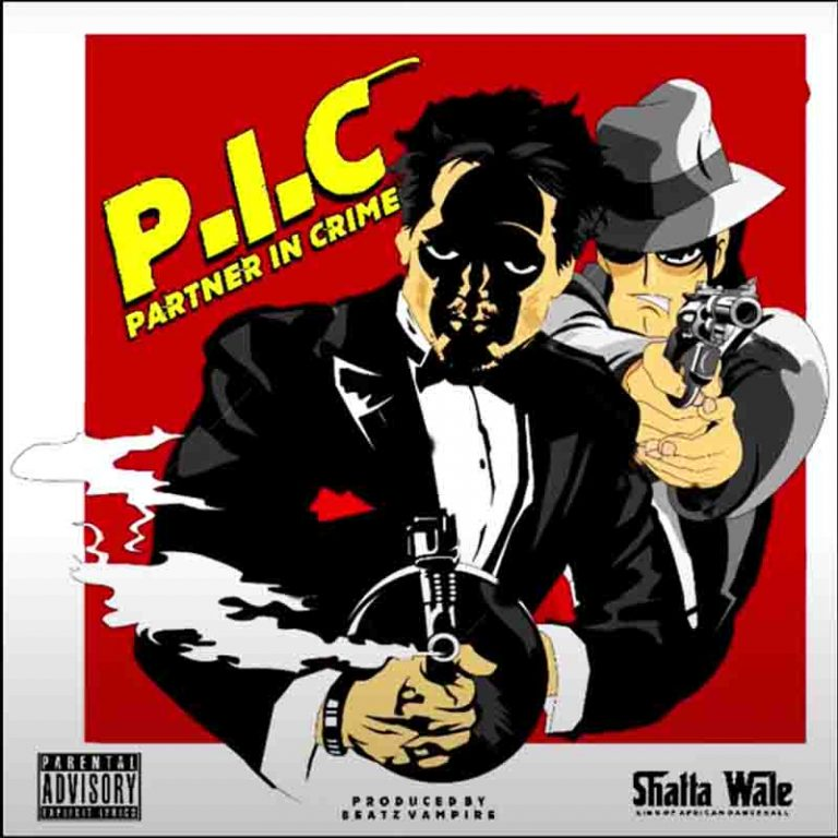 Partner In Crime (P.I.C) song by Shatta Wale Mp3 Download